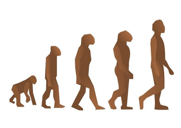 750x531 Theories On The Evolution Of Consciousness Must Account For Why
