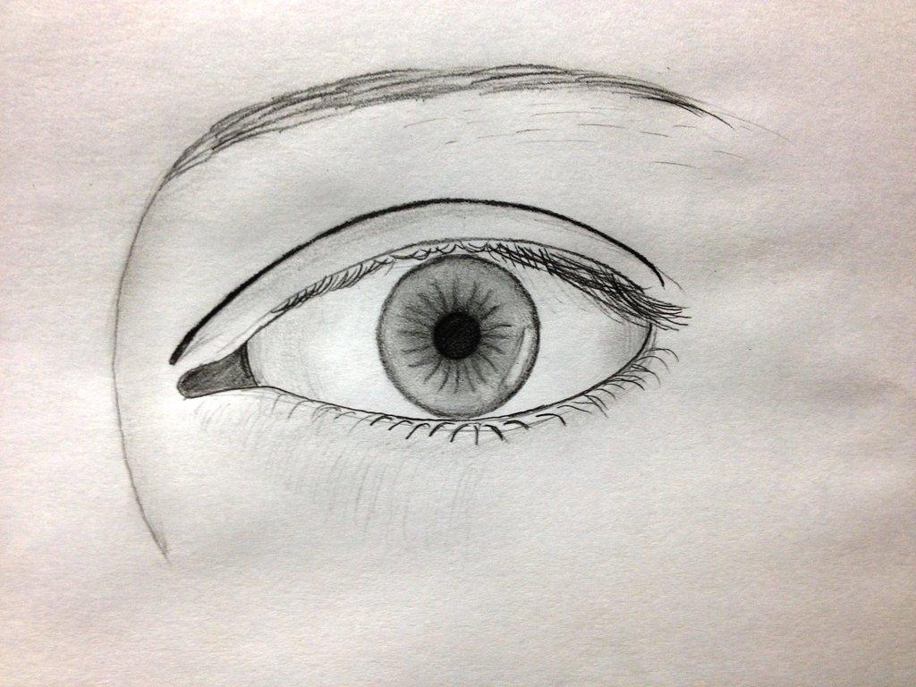 human eye drawing at getdrawings com free for personal use human