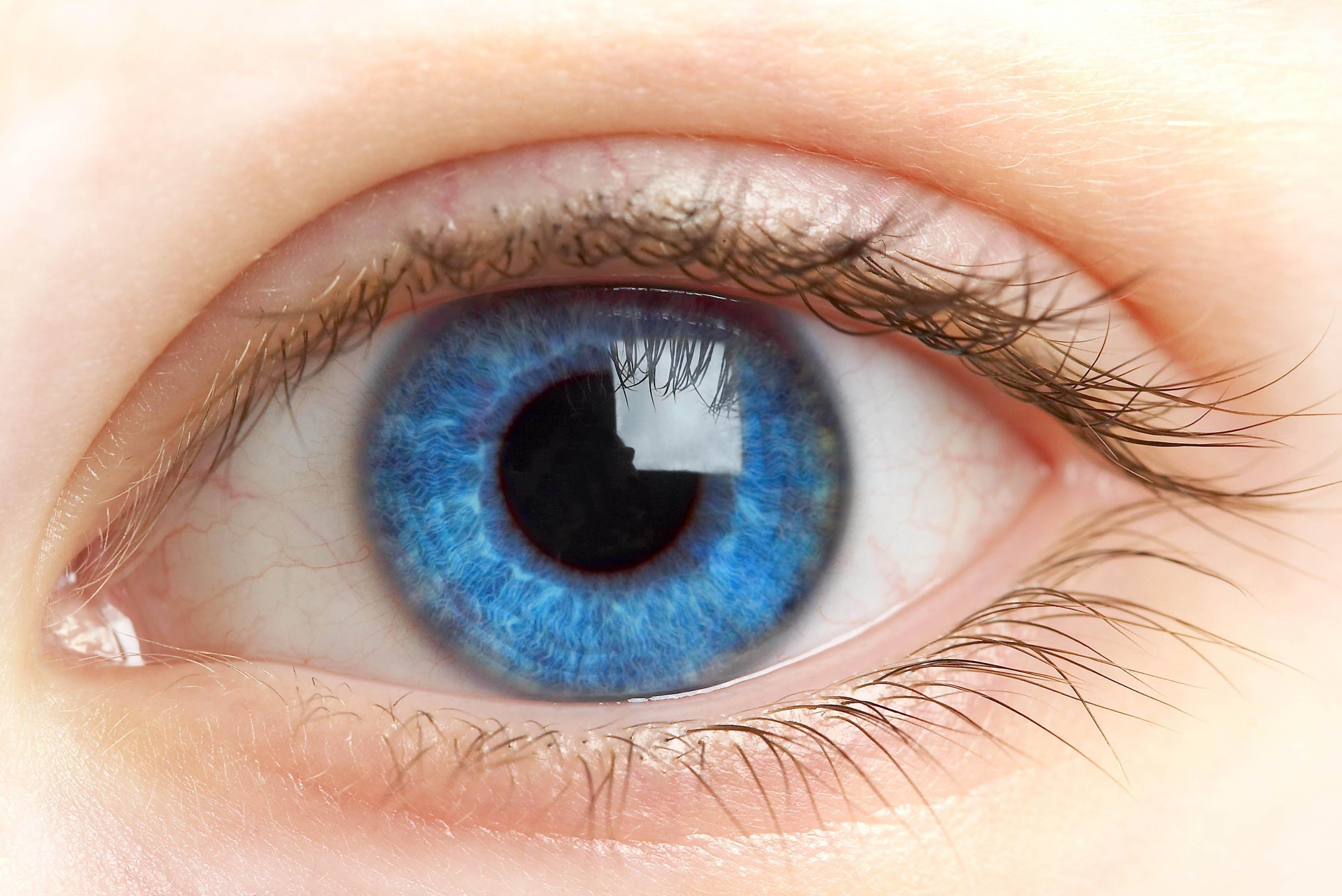 3490x2332 Tutorial How To Draw A Human Eye anatomyampexplanation.