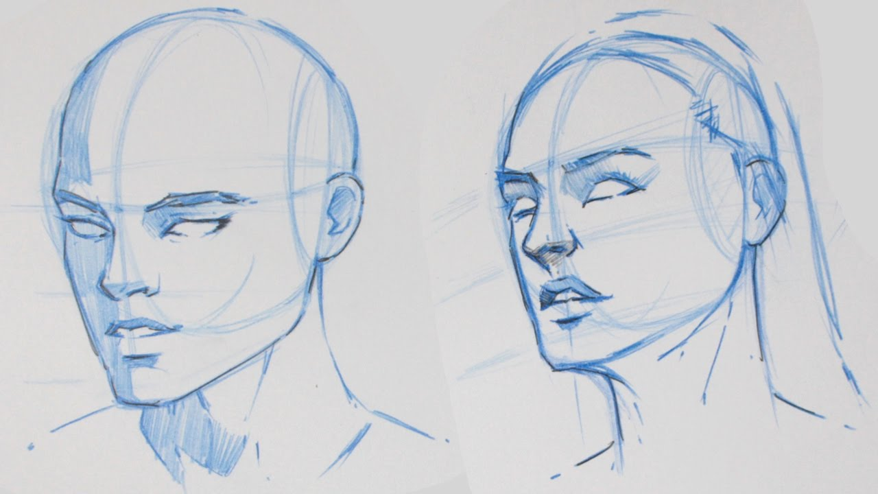 1280x720 How To Draw The Human Head