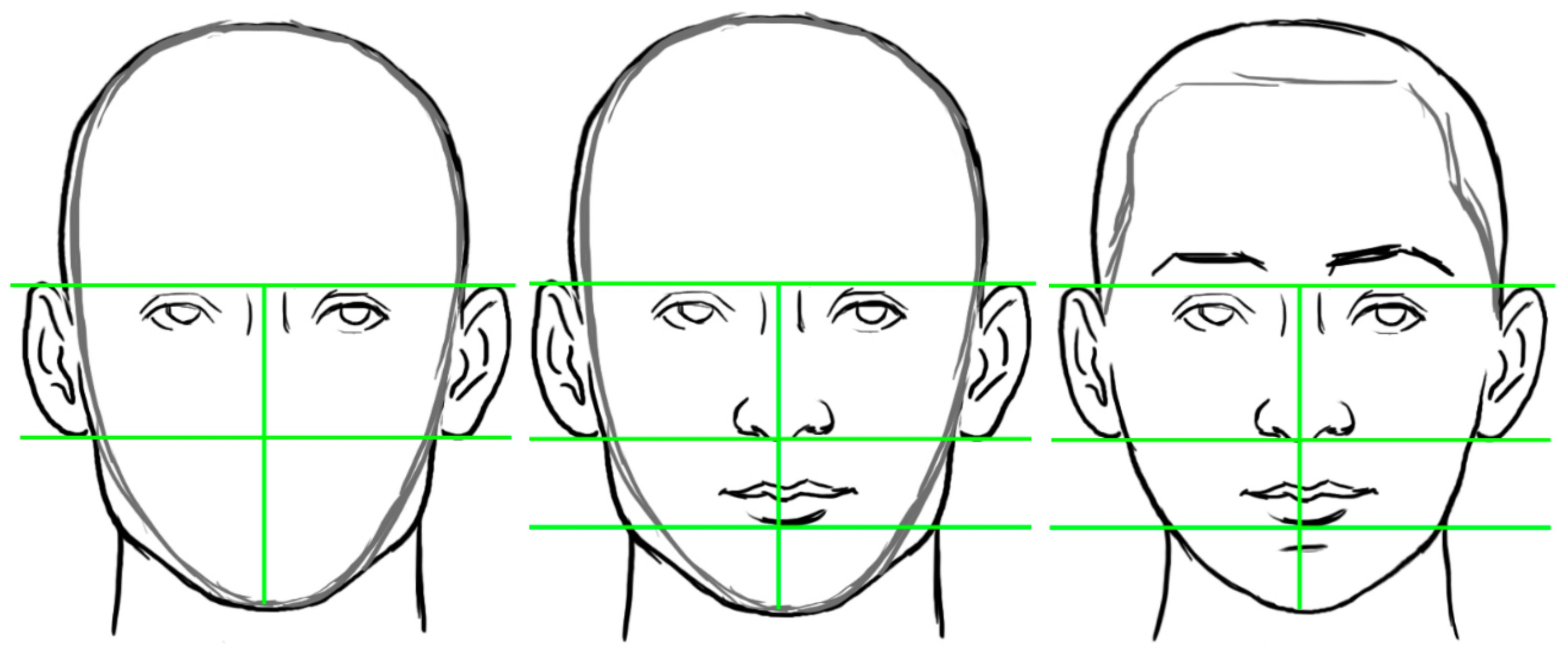 3000x1252 Picture Of How To Draw A Human Face Human Face Drawing How To Draw