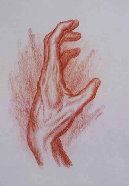 445x640 Human Hands Sketches Human Hand Hand Studies Drawing