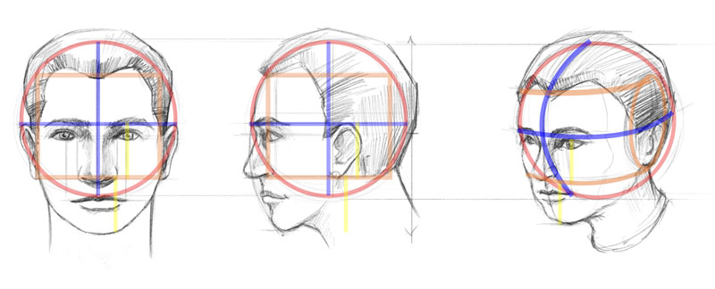 800x324 How To Draw A Face