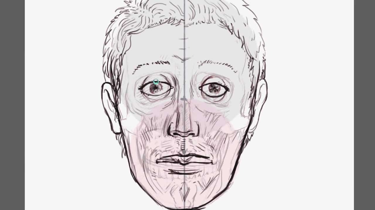 1280x720 Human Anatomy How To Draw And Ink The Head
