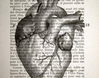 340x270 Anatomical Heart Print