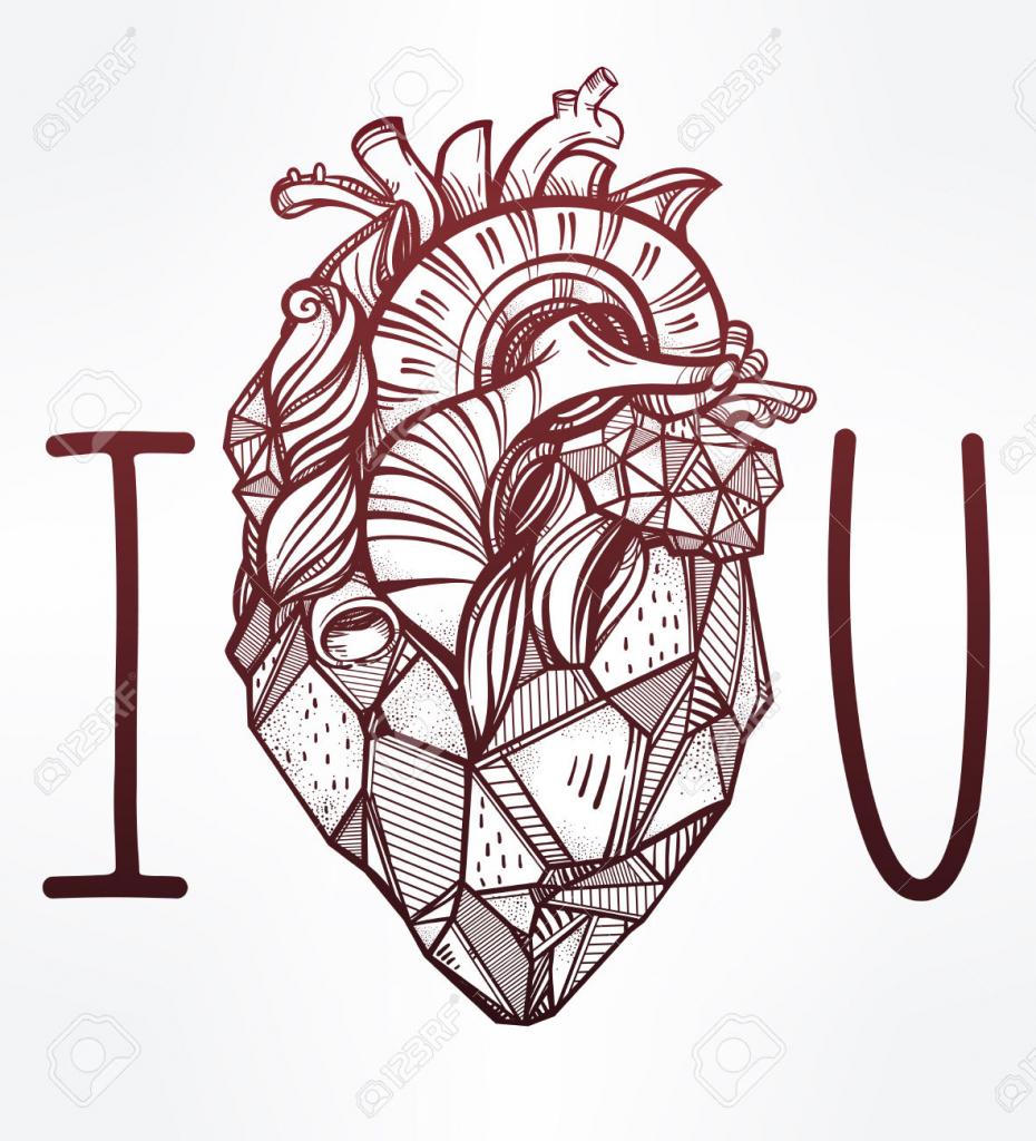 930x1024 Drawing A Human Heart