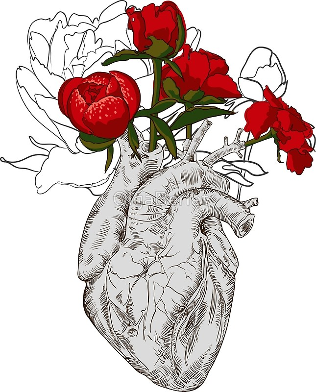 645x800 Drawing Human Heart With Flowers Art Prints By Olgaberlet Redbubble