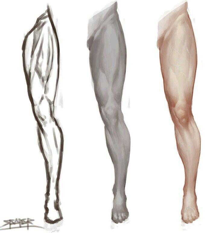Human Leg Drawing at GetDrawings.com   Free for personal use Human ...