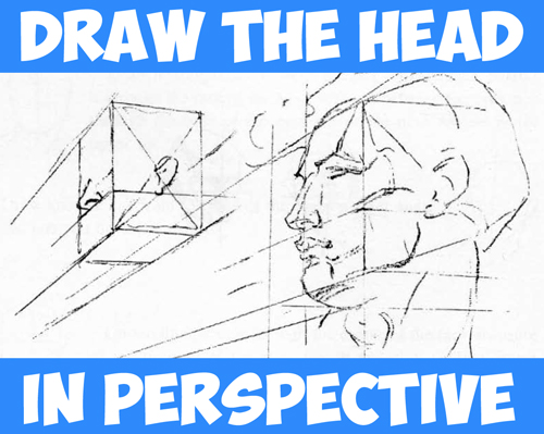 500x399 How To Draw The Head Perspective Drawing Human Head