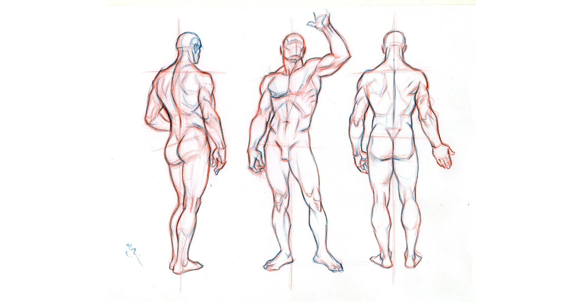 2000x1040 Guide Importance Of Proper Body Proportions And How