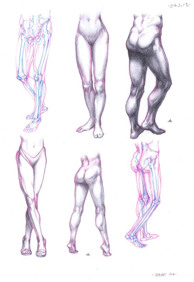 Human Reference Drawing at GetDrawings.com | Free for personal use ...