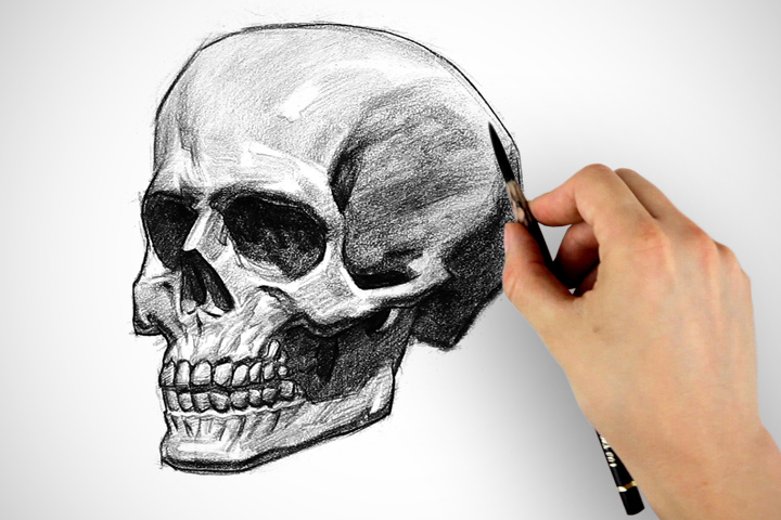 720x480 How To Draw A Skull