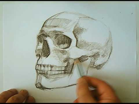 480x360 Speed Drawing Human Skull