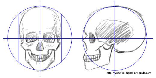 518x260 Drawn Skull Step By Step