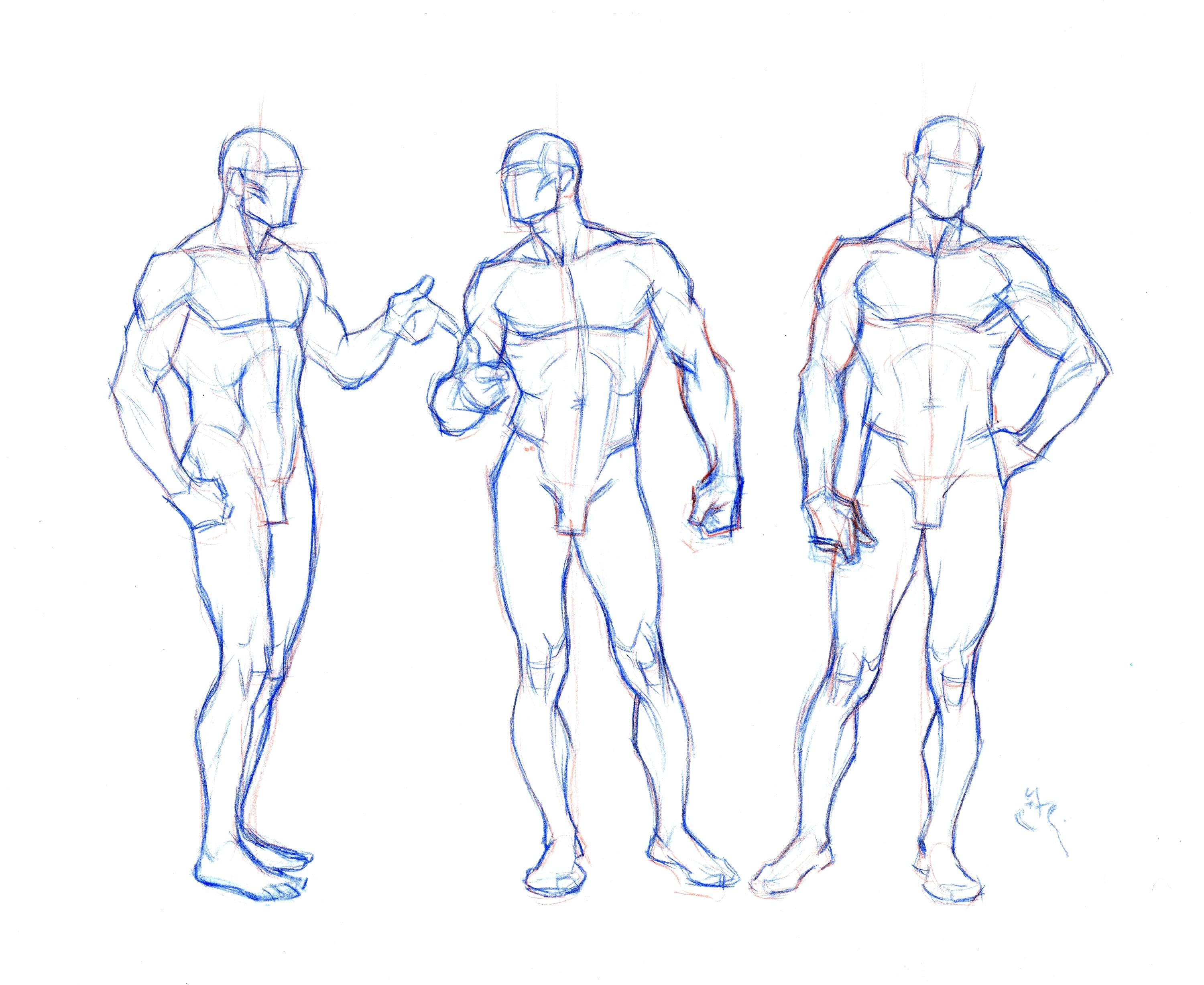 Human Template Drawing At Getdrawings Com Free For