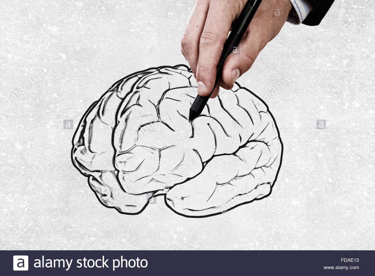 1300x956 Close Up Of Male Hand Drawing Human Brain Stock Photo 94272895