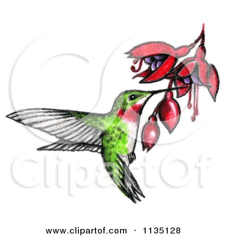 450x470 Colorful Hummingbird Drawing Clipart