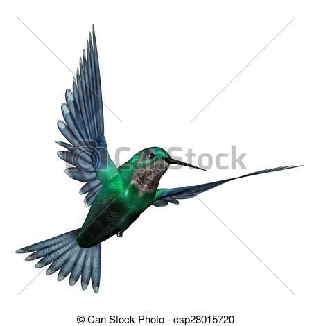 450x470 Emerald Hummingbird