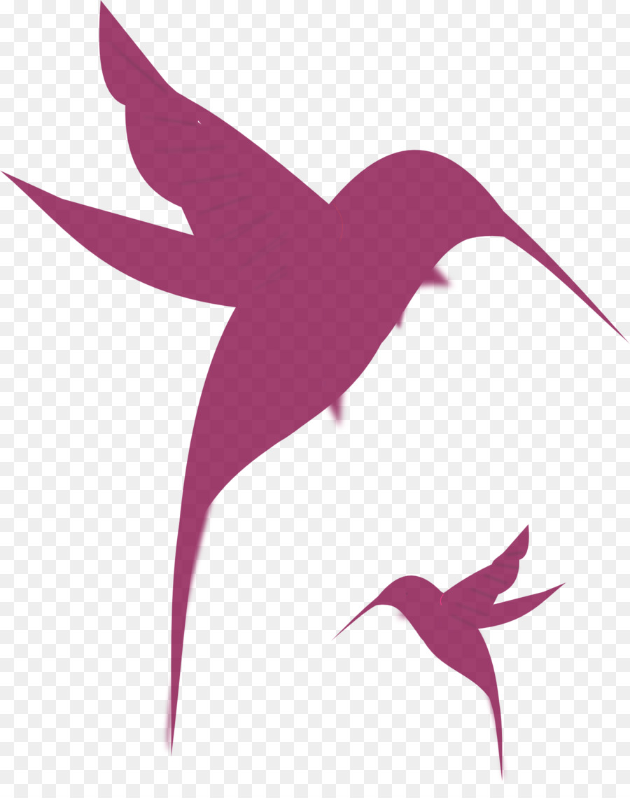 900x1140 Hummingbird Silhouette Drawing Clip Art