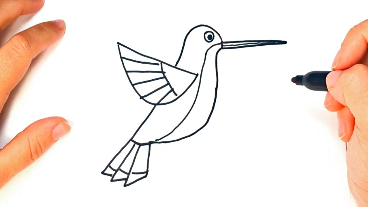 1280x720 How To Draw A Hummingbird Hummingbird Easy Draw Tutorial