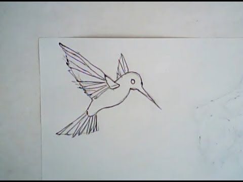 480x360 How To Draw A Hummingbird (Simple Drawing)