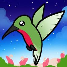 220x220 How To Draw How To Draw A Hummingbird For Kids