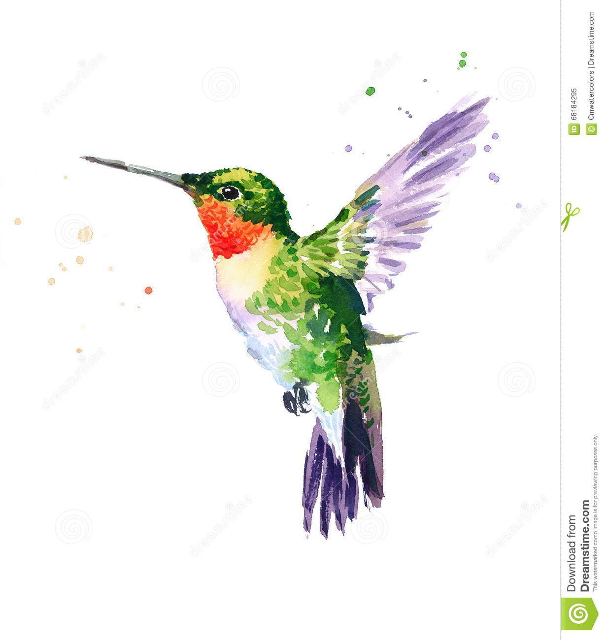 1228x1300 Hummingbird Flying Watercolor Bird Illustration Hand Drawn