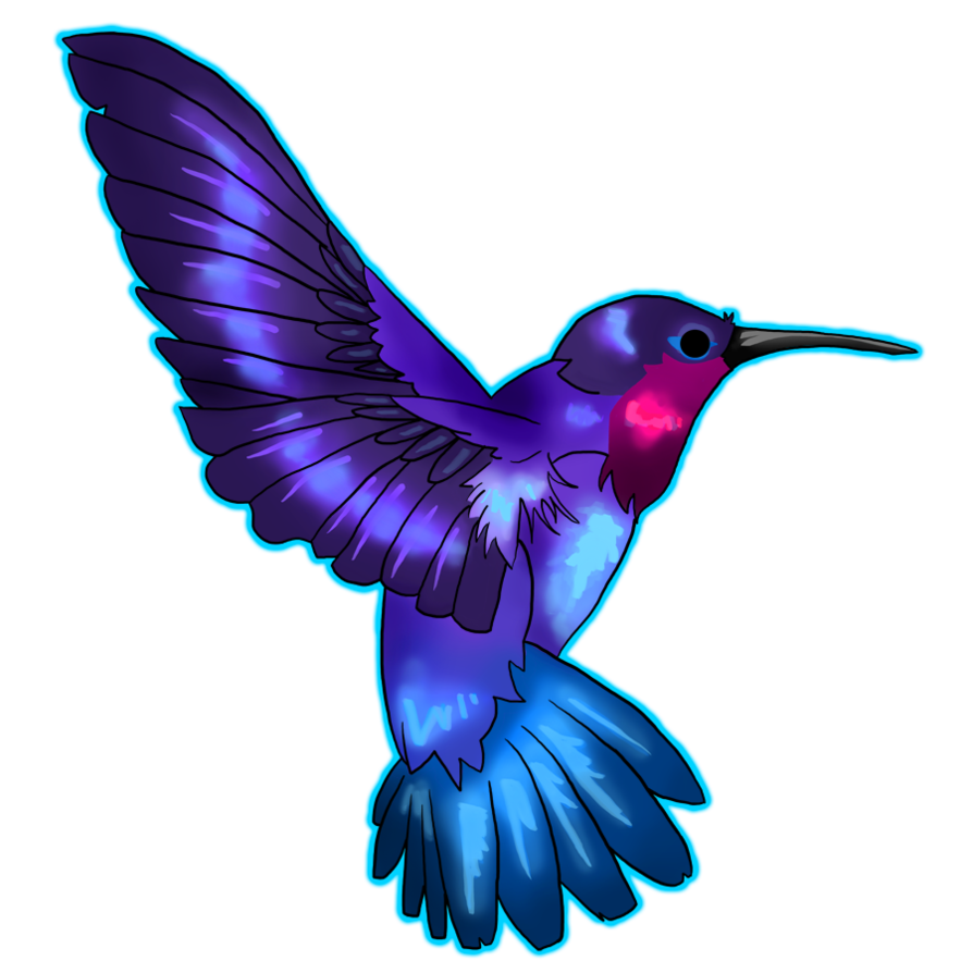 894x894 Hummingbird Png Transparent Free Images Png Only
