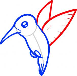 302x297 How To Draw How To Draw A Hummingbird For Kids