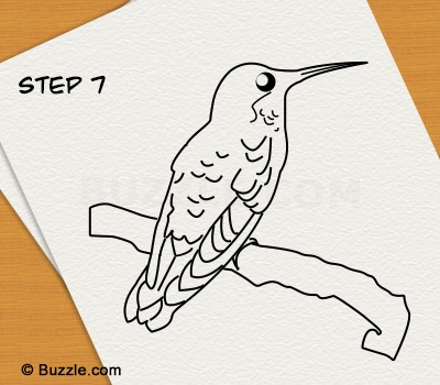 400x350 Step By Step Instructions To Draw A Hummingbird