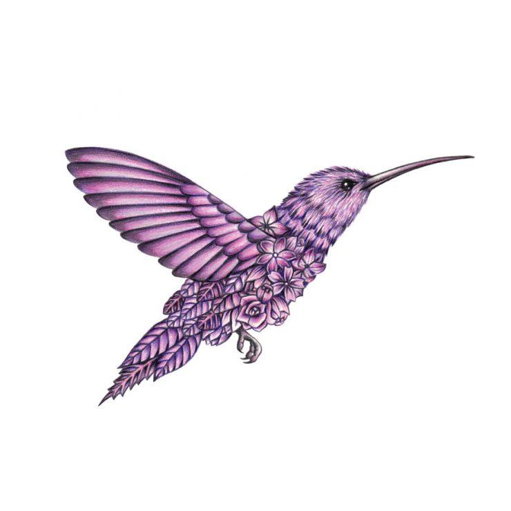 740x740 Surreal Colored Pencil Drawings Celebrate Fauna And Flora Designwrld