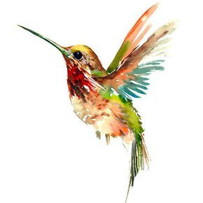 290x290 Most Amazing Tattoo Designs Watercolor Hummingbird
