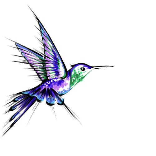 500x500 Humming Bird Tattoo Design By