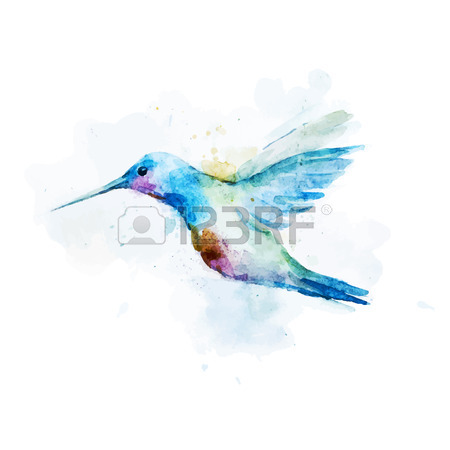 450x450 4,898 Hummingbird Stock Illustrations, Cliparts And Royalty Free