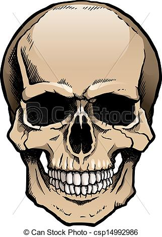 322x470 Colored Human Skull With Jaw. Colored Human Skull With A Vector