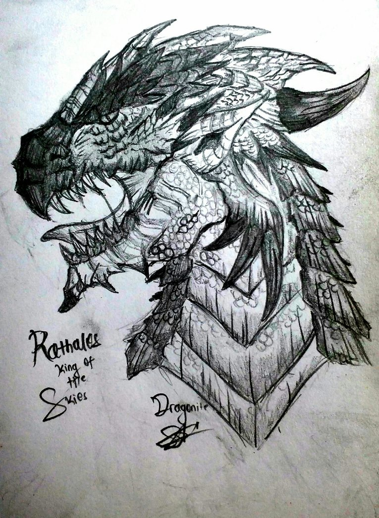 765x1044 Rathalos Pencil Drawing (Monster Hunter) By Xdragonitex