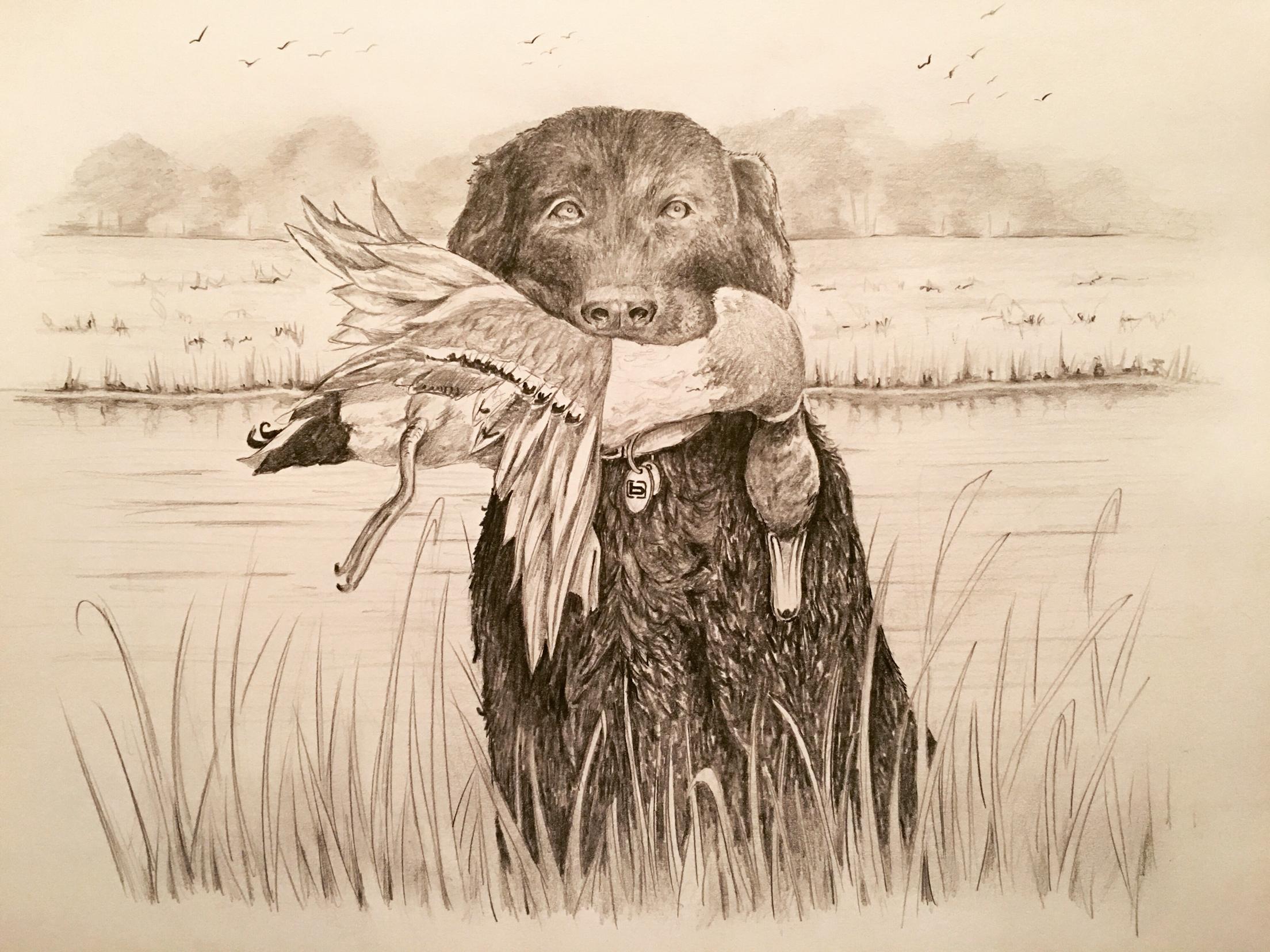 2208x1656 8.5x11 Pencil On Paper Hunt'N Buddy Wildlife Art, Drawing
