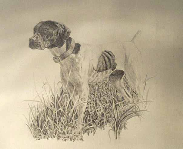 604x493 Step 2, Update On The Drawing . Brags Gun Dog Forum 2013