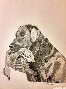 224x300 Duck Hunting Drawings