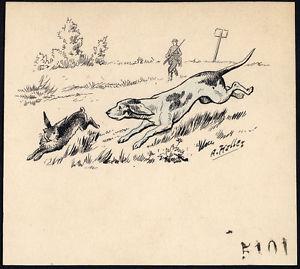 300x269 Antique Drawing Hunting Dog Hare Hunter Item 5101 Alex Hallez 1900