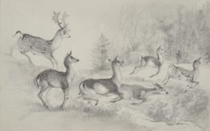 300x187 Otto Arnz (1823 Aft. 1860) Hunting Scene, Drawing, Ca. 1850 Ebay