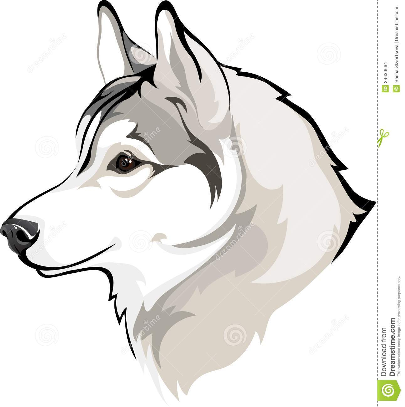 husky cartoon drawing at getdrawings com free for personal use