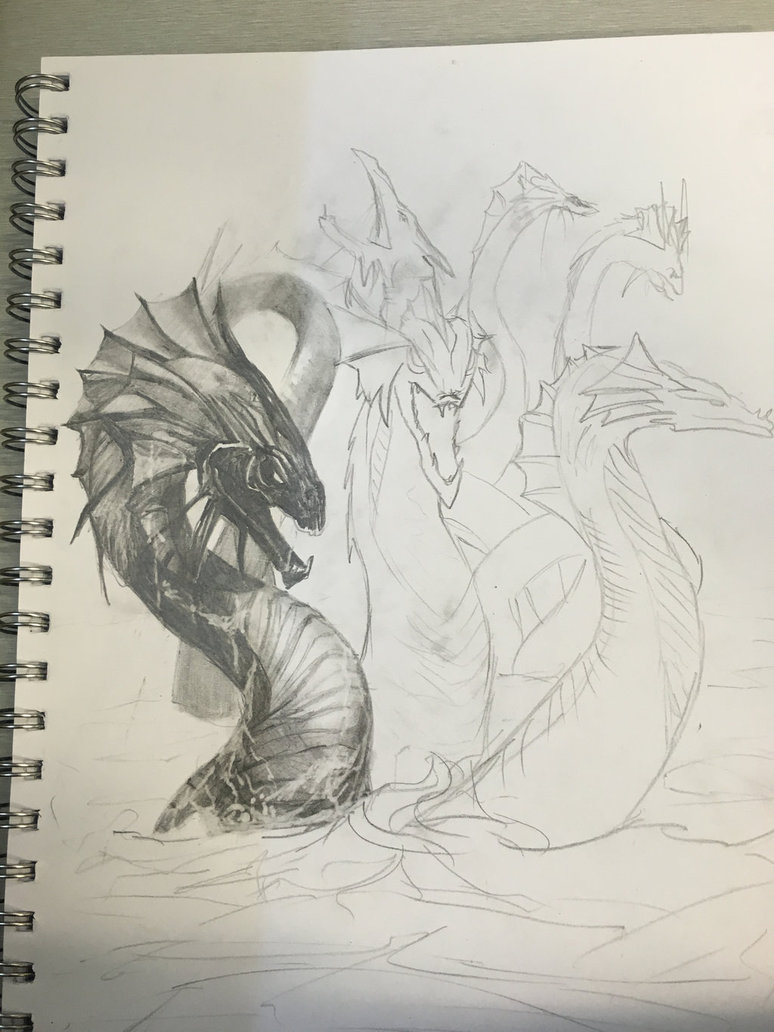 774x1032 Hydra Pencil Drawing ~ In Progress By X3278mit
