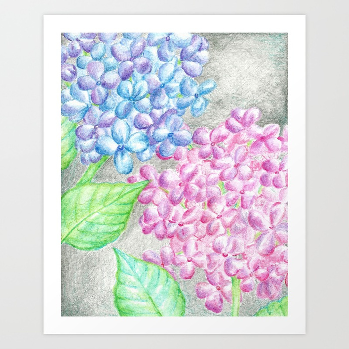 700x700 Flower Drawing, Watercolor Painting, Hydrangea Art Print By