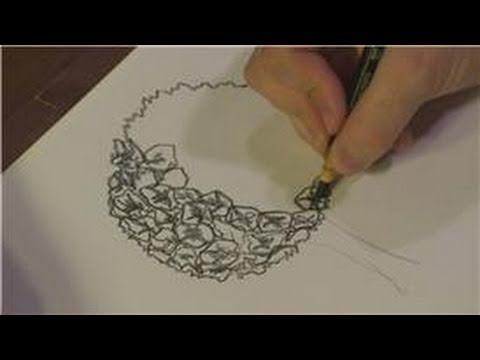 480x360 Drawing Plants Amp Flowers How To Draw Hydrangeas