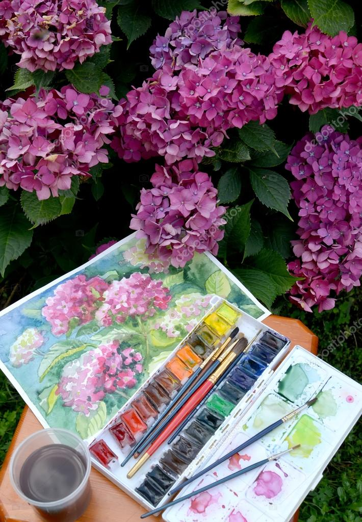 710x1023 The Drawing Blossoming Hydrangeas, Water Color Paints And Flow