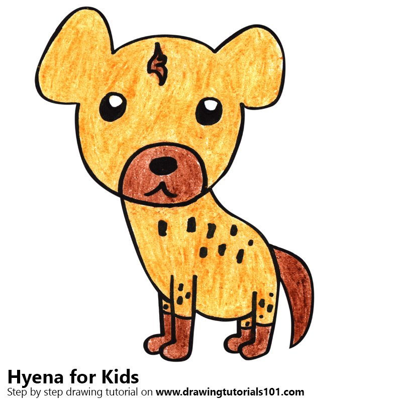 800x800 Learn How To Draw A Hyena For Kids (Animals For Kids) Step By Step