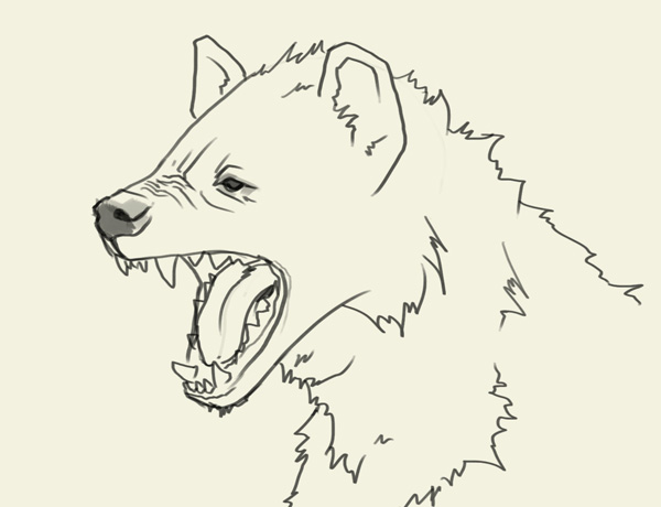 600x460 Hyena Head Drawing.jpg Animals ) Hyena