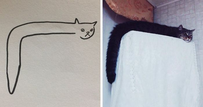 700x368 When Your Teacher Keeps Saying You Can'T Draw Cats, But Your