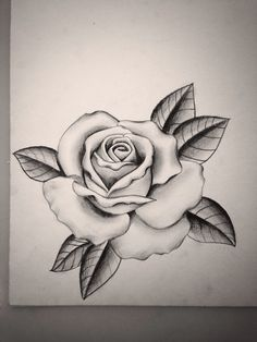 236x314 Pencil Drawings This Is My First Attempt